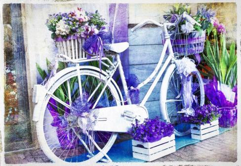 vintage floral bike - artistic picture