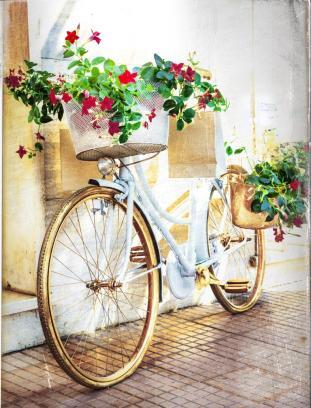 floral bike - vintage card