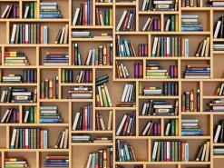 Education concept. Books and textbooks on the bookshelf.