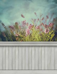 Spring wall background/backdrop